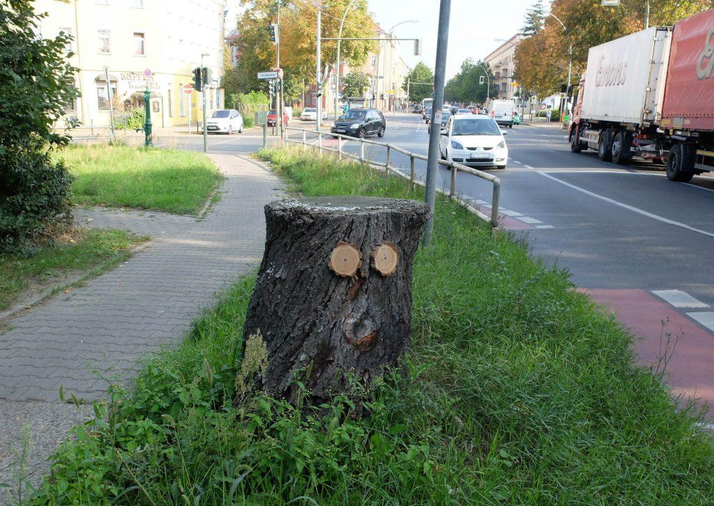 strassenbaumrest